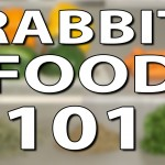 Video: What Do Rabbits Eat? | Rabbit Food 101