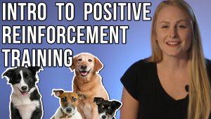 positive-reinforcement